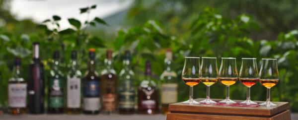 Termine Whisky-Tastings